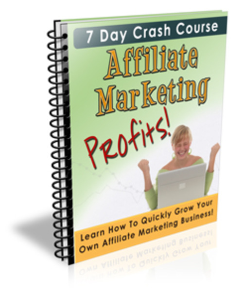 Product picture Affiliate Marketing Profits--Download--PLR_MRR